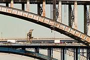 Old bridges in nyc. CROSS BRONX EXPRESSWAY 2009