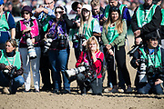 November 3, 2018: Breeders' Cup Horse Racing World Championships. Photographers wait for horses to return.