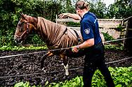ENSCHEDE - dierenbescherming landelijke inspectie dienst lid ROBIN UTRECHT ENSCHEDE - dierenbescherming landelijke inspectie dienst lid  en ambulance ROBIN UTRECHT