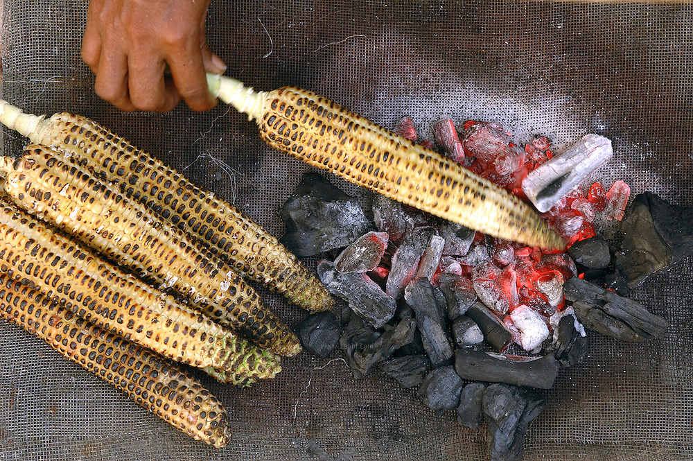 'Bhuta' or mase on the cob is popular during the summer months. Streetside vendors frantically fan their mobile coal fires, gently roasting the corn cobs while people line up to buy this popular Indian snack. Spicy Roasted Corn On The Cob, known as Bhutta in India, is best made with yellow corn with kernels that are not too soft. Each vendor has his own secret spice rub which he applies generously to the roasted corn.