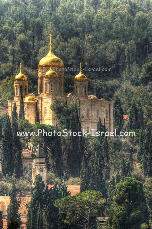 Israel, Jerusalem, the Russian Orthodox Church in Ein Karem AKA Russian Gornenskiy (Gorny) Monastery, church of all Russian Saints and Moskovia