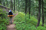 A backpacker hikes through a forest on his way through Eagle Creek Canyon, Eagle Cap Wilderness, Oregon