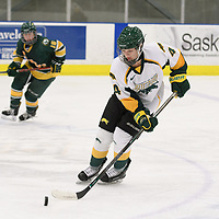 1st year defence man Mackenzie Hutchinson (4) of the Regina Cougars in action during the Women's Hockey home game on January 20 at Co-operators arena. Credit: Arthur Ward/Arthur Images