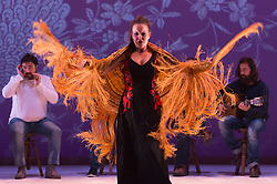 "© Licensed to London News Pictures. 20/02/2015. London, England. Alejandra Gudí performing. Ballet Flamenco de Andalucía perform ""Las Cuatro Esquinas"" from their production ""Images: 20 Years"" during the Flamenco Festival London 2015 at Sadler's Wells Theatre. The show runs from 20-21 February with the festival running from 16 February to 1 March 2015.  Photo credit: Bettina Strenske/LNP"