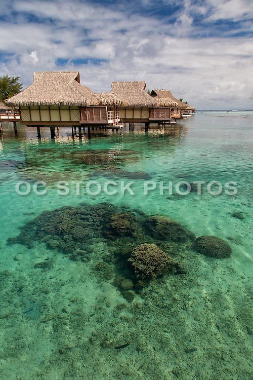 Moorea Tahiti Vacations