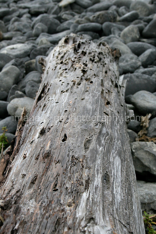 Driftwood log on rocks on Inis Oirr the Aran Islands Galway Ireland
