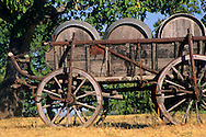Old wooden wagon & wine barrels, near Plymouth, Shenandoah Valley, Amador County, California