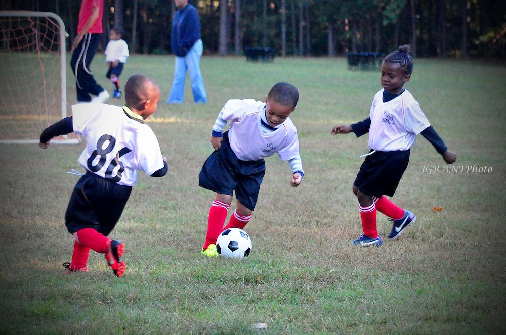 Tiger Soccer Club U6 Guardians Game Gallery Fall 2014. ©Jaime Grant/JGRANT Photo.