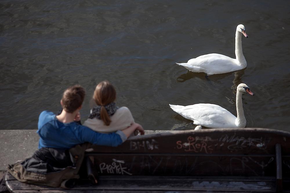 Moldau Ufer.