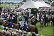 PADDOCK, Ebor Festival, York Races, 20 August 2014