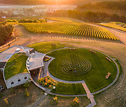 Aerial drone view over Fairsing Vineyard 2018 harvest, Yamhill-Carlton AVA, Willamette Valley, Oregon