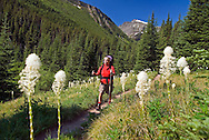 Waterton National Park, Alberta, Canada, July 2008. Jillian hikes through the bear grass, a plant that is indigenous to waterton and Glacier NP. The Tamarack trail is a multiple day hike in the Rocky Mountains. Photo by Frits Meyst/Adventure4ever.com