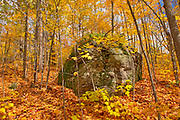 Rock in hardwood forest in autumn near Parry Sound.<br />