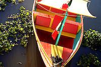 Colourful sailboat lies in weedy waters, lake Chapala, Mexico