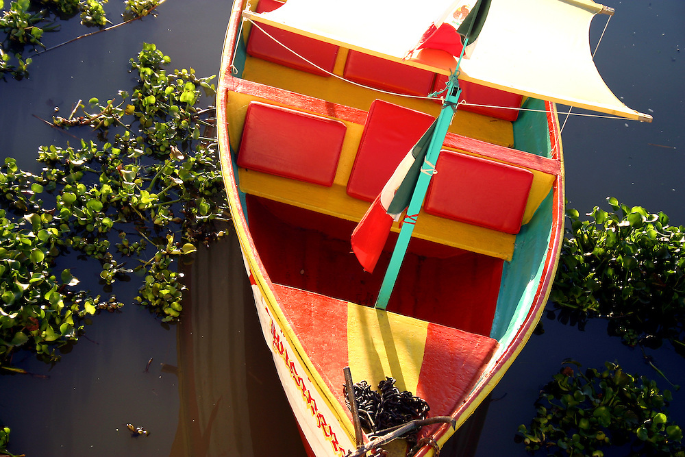Colourful sailboat lies in weedy waters, lake Chapala, Mexico