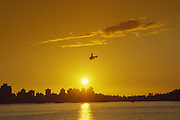 Seaplane, sunset, Vancouver, British Columbia, Canada<br />
