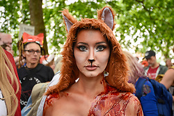 "© Licensed to London News Pictures. 29/05/2017. London UK. Model Daryna Milgevska in fox costume and body paint joins demonstrators in an ""Anti-Hunting March"" in central London, marching from Cavendish Square to outside Downing Street.  Protesters are demanding that the ban on fox hunting remains, contrary to reported comments by Theresa May, Prime Minister, that the 2004 Hunting Act could be repealed after the General Election.<br />  Photo credit : Stephen Chung/LNP"