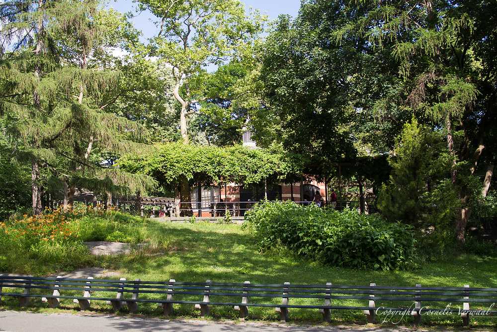 The Central Park Chess House