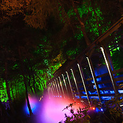 Scottish Autism service users visit the Enchanted Forest  show: Elemental at Faskally Wood, near Pitlochry. 01 Oct 2014. Must credit: Photo by Tina Norris <br /> Copyright &copy; photo by Tina Norris 07775 593 830