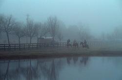 three people on horseback riding in the fog