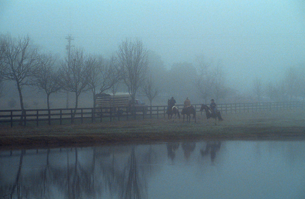 three people on horseback riding in the fog