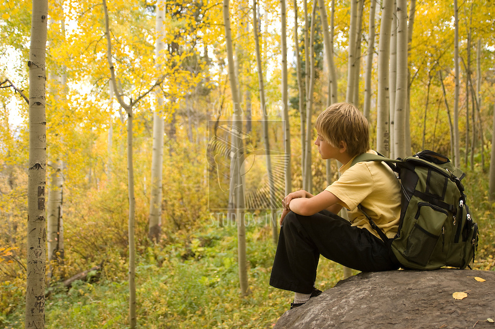Boy with backpack sitting in a tranquil aspen forest during fall