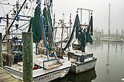 Shrimp boats docked along Shem Creek on a foggy winter morning in Charleston, South Carolina.