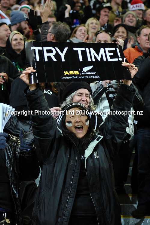 A fan during the 3rd Steinlager Series Rugby Union Test match, All Blacks v Wales, at Forsyth Barr Stadium, Dunedin, New Zealand. 25th June 2016. Copyright Photo: John Davidson / www.photosport.nz