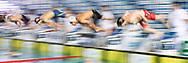 Start<br /> 200 Farfalla Uomini<br /> Finale Coppa Brema 2019  di Nuoto <br /> 07/04/2019<br /> Nuoto Swimming Campionato italiano a Squadre<br /> , vasca 25 metri<br /> Stadio del Nuoto di Riccione<br /> Photo © Giorgio Scala/Deepbluemedia/Insidefoto