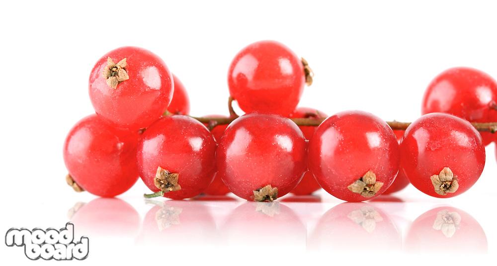 Studio shot of redcurrants on white background