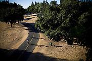 Cyclists ride the American River Bike Trail in Sacramento, California.