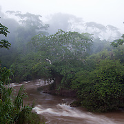 El Gato an ecotourism initative along Tambopata River in Peru near the community of Baltimore. El Gato, owned by the Ramirez Family, is one of the projects supported by Interoceanica SUR (iSUR), an organization that seeks to promote conservation efforts around the new Interoceanic Highway that streteches across Peru and Brazil.