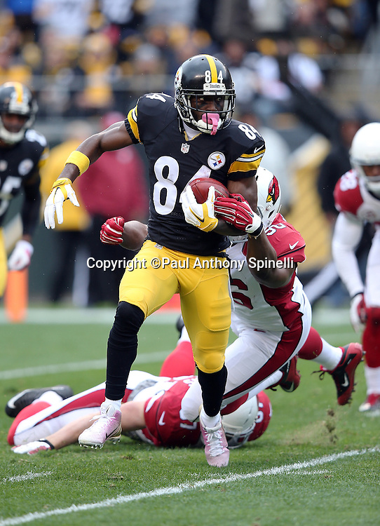 Pittsburgh Steelers wide receiver Antonio Brown (84) runs away from defenders as he returns a first quarter punt during the 2015 NFL week 6 regular season football game against the Arizona Cardinals on Sunday, Oct. 18, 2015 in Pittsburgh. The Steelers won the game 25-13. (©Paul Anthony Spinelli)