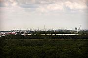 Twenty of 22 Cranes Working at the Georgia Ports Authority Garden City Terminal, Saturday, July, 18 2015, in Savannah, Ga.  (GPA Photo/Stephen B. Morton)