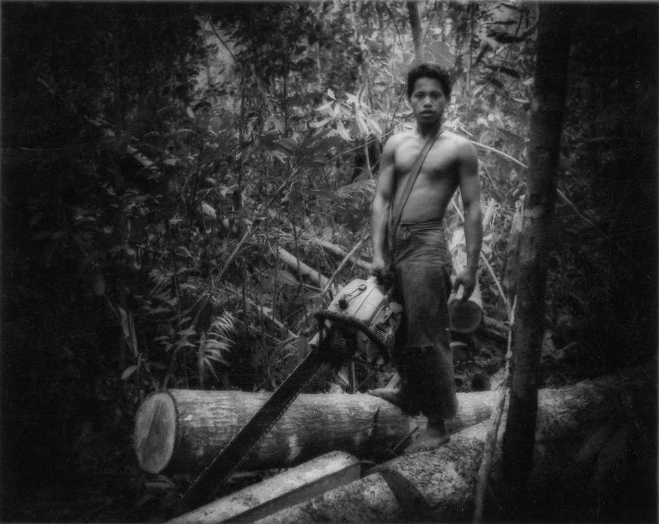 Death Throes of a Great Rainforest - Illegal logger inside  Gunung Palung Nat'l Park, West Kalimantan (Borneo), Indonesia.  Gunung Palung Nat'l Forest is one of the last protected refuges for orang utans.  This young illegal logger has been lent a chain saw for the merchant in town who sells the timber.  Illegal loggers have penetrated deep.into the park.   On a five hour hike, one way, into an orang utan research center within the park, four hours of the hike were through illegally logged forest.