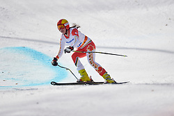 Alana Ramsey, Women's Giant Slalom at the 2014 Sochi Winter Paralympic Games, Russia