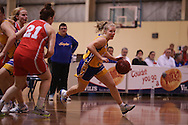 Premier League Forestville Eagles vs North Adelaide Rockets