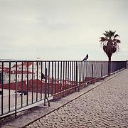 Europa, Portugal, Lissabon, Alfama, Largo Das Portas Do Sol.<br /> &copy; 2013 Harald Krieg/Agentur Focus