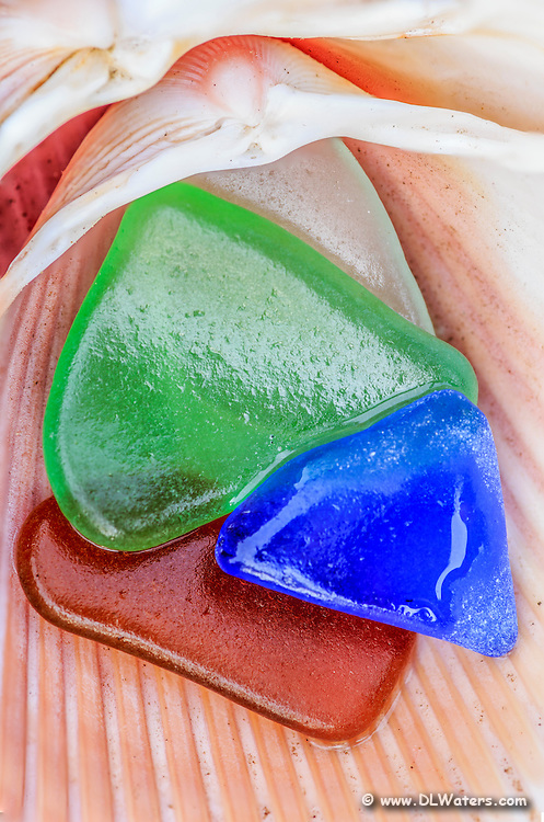 A close-up photo of beach glass and shells on Outer Banks Nc beach.