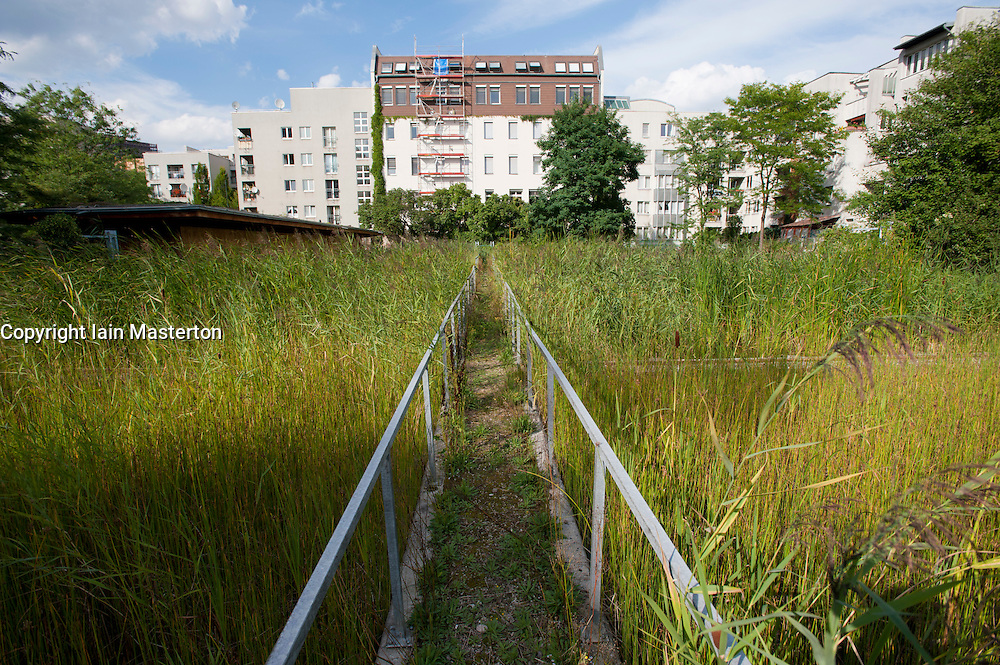 Reed beds treating domestic wastewater from apartment buildings in Mitte district of Berlin Germany