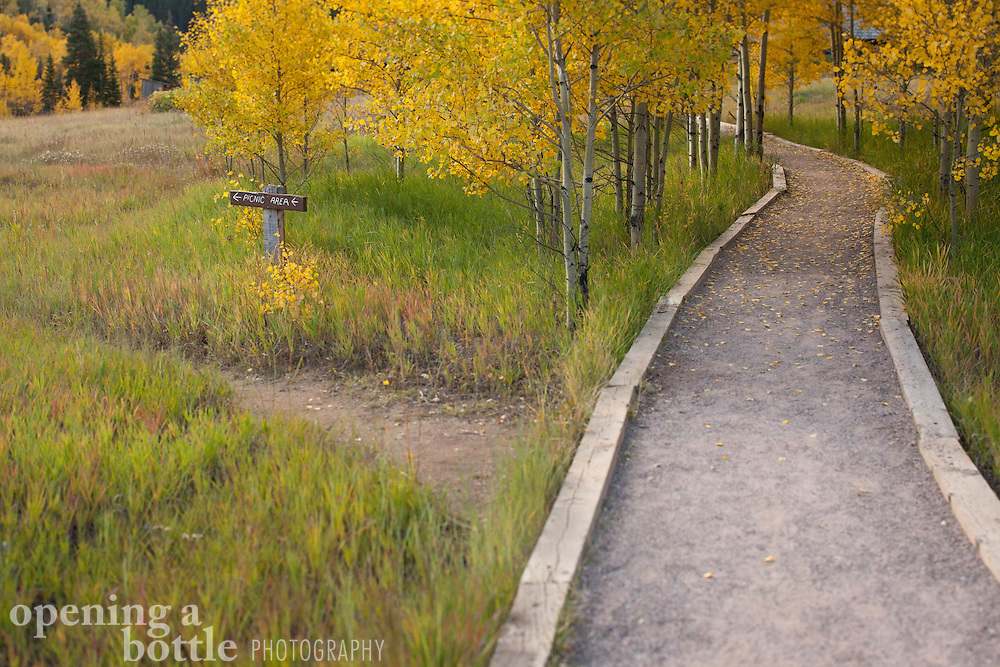A path enters a grove of aspen trees in fall color, Ashcroft Historic Site, a ghost town located south of Aspen, Colorado.
