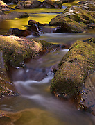 Necarney Creekscape