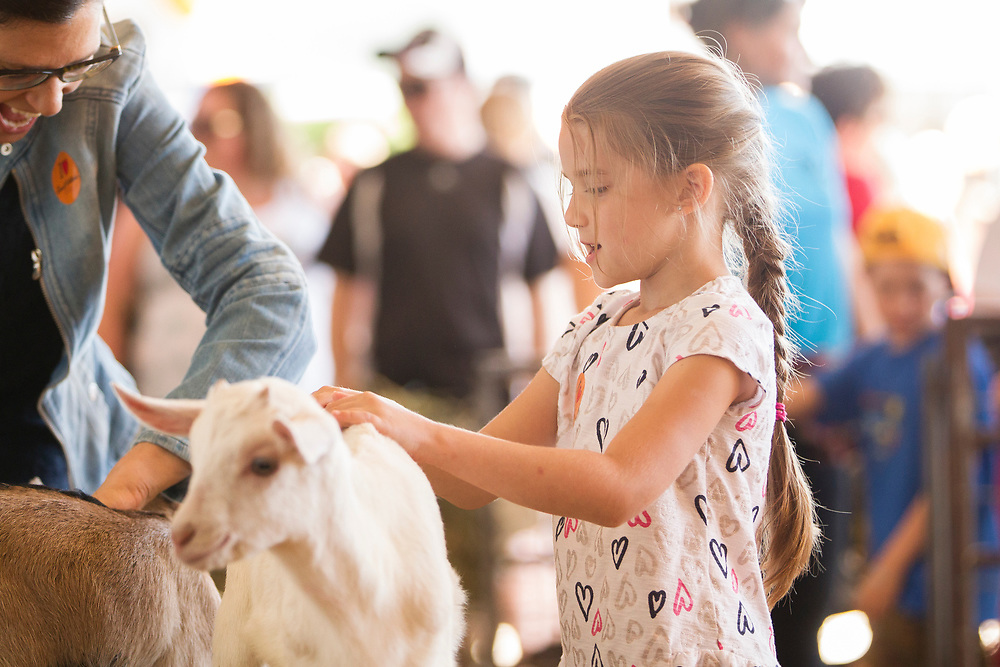 Sophia Palazoloa (6) pets a goat during the Breakfast on the Farm event near Shedden, Ontario, Saturday, June 24, 2017.<br /> Farmers Forum/ Geoff Robins