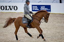BEERBAUM Ludger (GER), Casello<br /> Göteborg - Gothenburg Horse Show 2019 <br /> Longines FEI Jumping World Cup™ Final<br /> Training Session<br /> Warm Up Springen / Showjumping<br /> Longines FEI Jumping World Cup™ Final and FEI Dressage World Cup™ Final<br /> 03. April 2019<br /> © www.sportfotos-lafrentz.de/Stefan Lafrentz