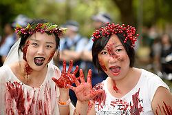 October 29, 2016 - Sydney, NSW, Australia - Participants dressed as zombies shuffle the street during the Sydney Zombie Walk on October 29, 2016 in Sydney, Australia. Hundreds of people gathered today dressed as zombies for the 6th edition of the Sydney Zombie Walk in support of ''The Brain Foundation' (Credit Image: © Hugh Peterswald/Pacific Press via ZUMA Wire)