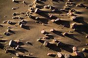 Lake Superior stones on the beach in Copper Harbor MI.