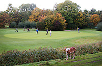 NUMANSDORP - Hole 5 met paard, van de 9 holes baan  van de Golfclub Cromstrijen. COPYRIGHT KOEN SUYK
