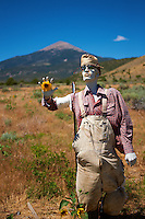 Zombie Sunflower Farmer. Image taken with a Nikon D3x and 45 mm f/2.8 PC-E lens (ISO 100, 45 mm, f/2.8, 1/2000 sec)