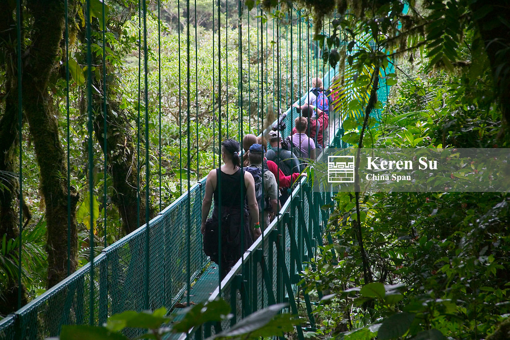 Tourists walk on sky bridge in the cloud forest, Monte Verde, Costa Rica