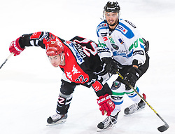 28.12.2015, Tiroler Wasserkraft Arena, Innsbruck, AUT, EBEL, HC TWK Innsbruck die Haie vs HDD TELEMACH Olimpija Ljubljana, 36. Runde, im Bild vielleicht.:  Christoph Hoertnagl (HC TWK Innsbruck Die Haie), Gregor Koblar (HDD Telemach Olimpija Ljubljana) // during the Erste Bank Icehockey League 36th round match between HC TWK Innsbruck  die Haie and HDD TELEMACH Olimpija Ljubljana at the Tiroler Wasserkraft Arena in Innsbruck, Austria on 2015/12/28. EXPA Pictures © 2015, PhotoCredit: EXPA/ Jakob Gruber